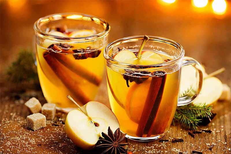 Vinegar Premium Mahnaz Food